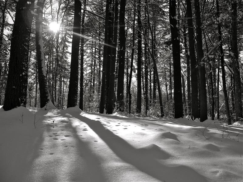 WinterBlog10