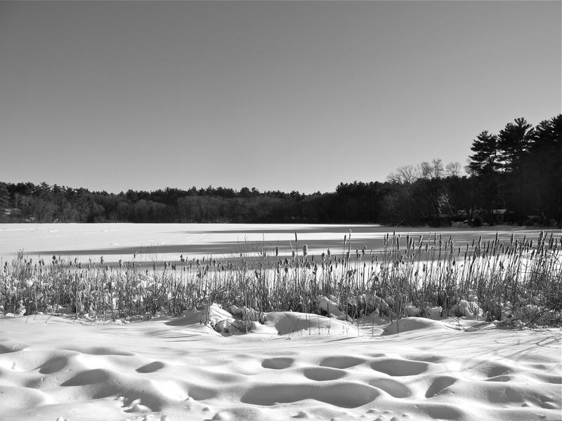 WinterBlog13