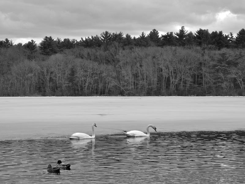 WinterBlog14