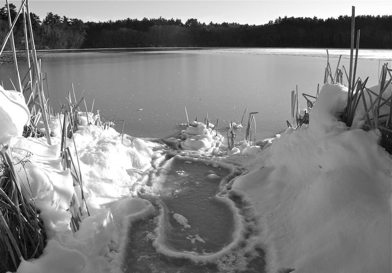 WinterBlog4